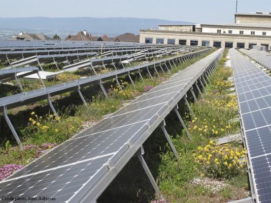 Toiture biosolaire sur le centre de congrès de Beaulieu à Lausanne
