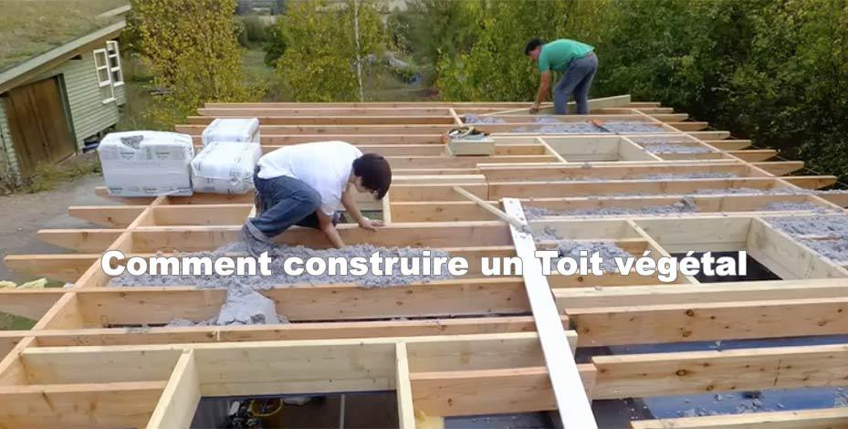 Comment construire un Toit végétal