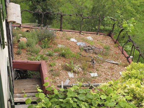 Un toit v g tal jura ch for Maison toit vegetal